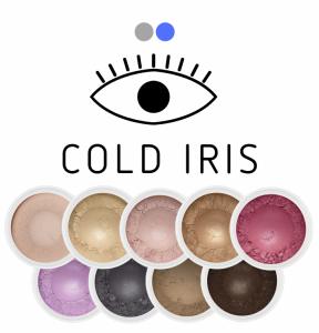 Zestaw mini cieni Cold Iris